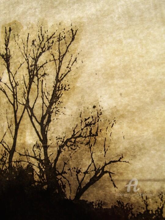 helene-mongin-arborescence-sepia-09.jpg