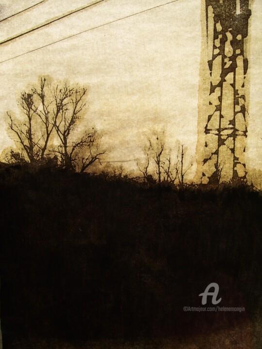 helene-mongin-arborescence-sepia-01.jpg
