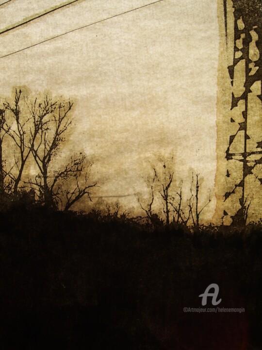 helene-mongin-arborescence-sepia-03.jpg