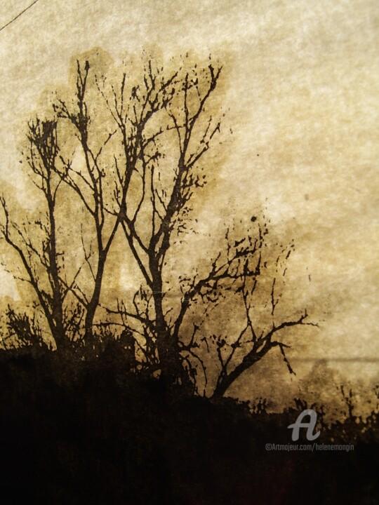 helene-mongin-arborescence-sepia-10.jpg