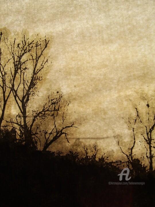 helene-mongin-arborescence-sepia-11.jpg